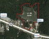 12824 Highway 105 W, Conroe, Texas 77304, ,Specialty,For Sale,Highway 105 W,1007